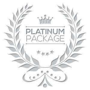 Website design in Kentucky Platinum Package
